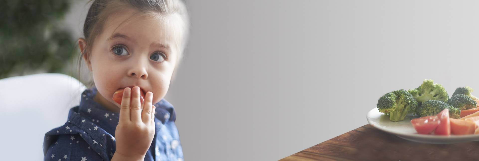 Las necesidades de hierro en la infancia y la adolescencia